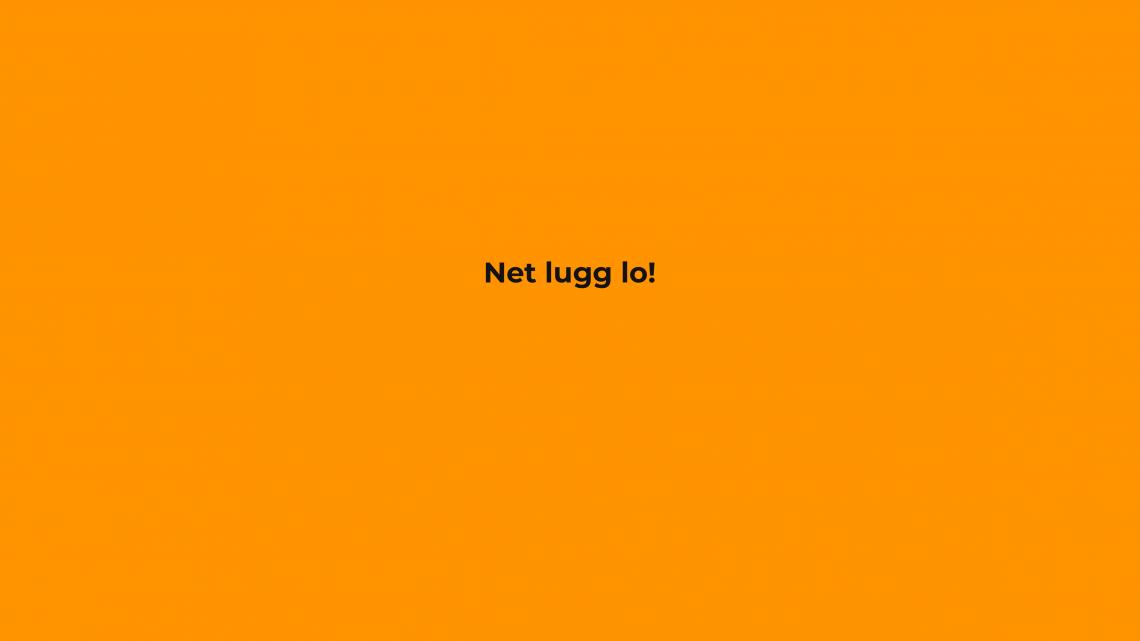 7_Net_Lugg_Lo-1